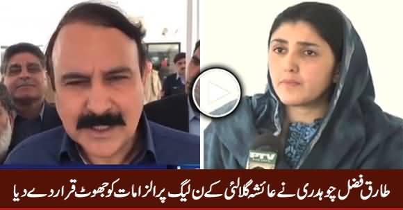 Tariq Fazal Chaudhry Denies Ayesha Gulalai's Allegations on PMLN
