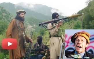 Tehreek e Taliban Thanked Imran Khan and Refused the Offer of Opening Office in Pakistan