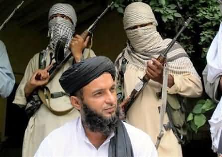 Tehreek Taliban Punjab Surrneder & Announce to Stop Its Attacks in Punjab