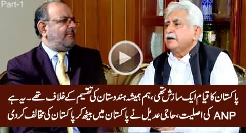 This Is Reality of ANP: Haji Adeel Declares Pakistan A Conspiracy Against Muslims