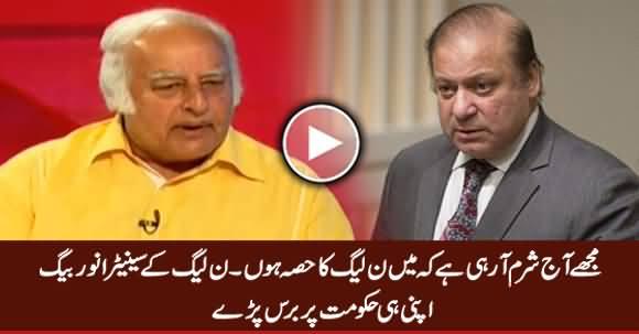 Today I Am Really Ashamed That I Am Part of PMLN - Senator Anwer Baig