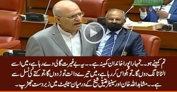 Tum Kutte Ki Nasal Se Ho - Intense Fight Between Mushahidullah Khan & Ateeq Sheikh in Senate