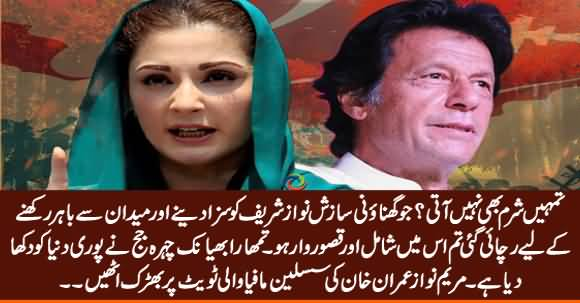 Tumhein Sharam Nahi Aati - Maryam Nawaz Got Angry on Imran Khan's Tweet