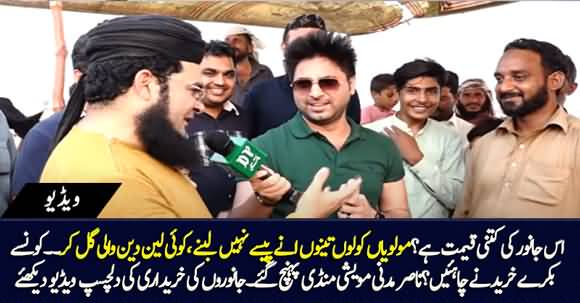 Very Amusing Video - Nasir Madni Reaches Cattle Market to Buy Animals, See What Happened Next?