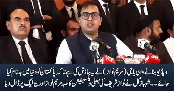 Video Banane Wali Baji Ne Yeh Sazish Ki Hai - Shahbaz Gill Blames Maryam For Nawaz Sharif's Fake Vaccination