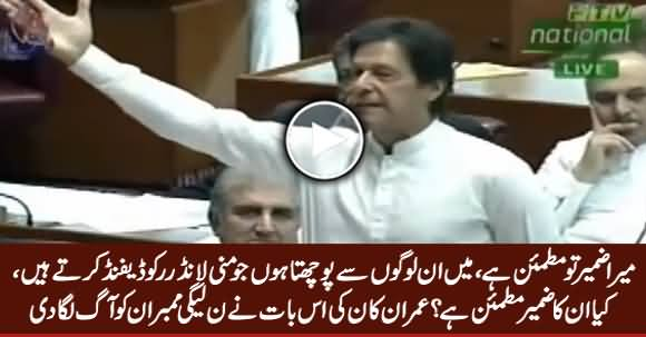 Watch How Imran Khan Made PMLN Members Angry In Assembly
