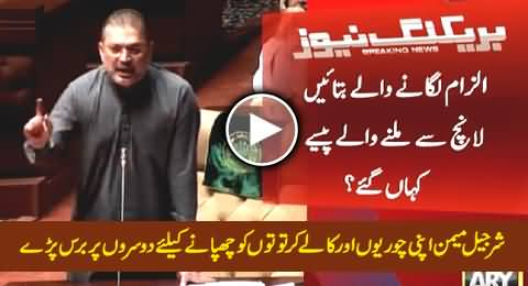Watch How This Thief Sharjeel Memon Shouting In Assembly Just to Cover Up His Black Deeds
