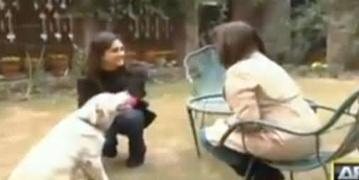 Watch What Meera Sethi's Dog Did With Javeria