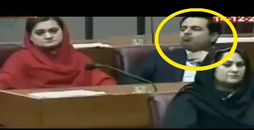 Watch What Talal Chaudhry Doing in Parliament, Caught on Camera