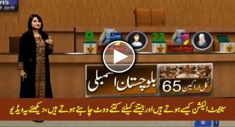 What is the Procedure of Senate Election & How Senators Are Elected, Watch This Video