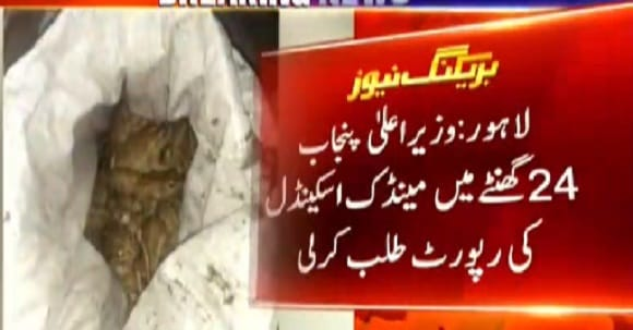 What Is The Reality Behind Lahore Frog Scandal, Details Revealed Within 24 Hrs
