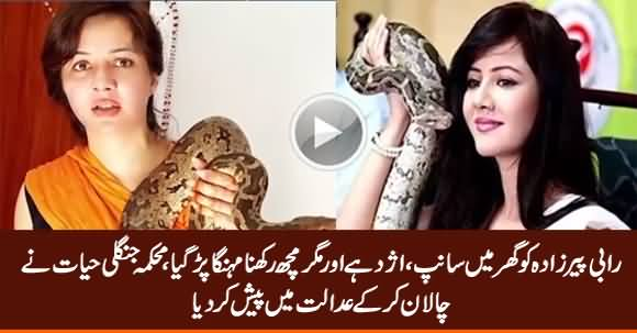 Wildlife Department Presented Challan Against Rabi Pirzada in Court For Keeping Wild Animals as Pet
