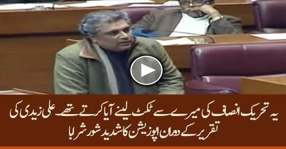 Ye Mere Pas Ticket Mangne Aate Thay - Uproar In Assembly By Opposition On Ali Zaidi's Speech