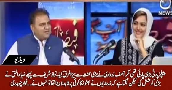 Zardari Ne PPP Ka Bari Mehnat Se Bera Garaq Kia - Fawad Chaudhry